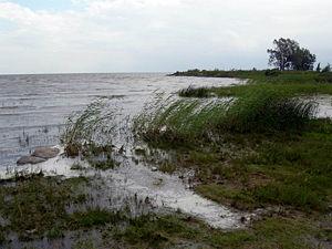 Mustvee - Image: Lake Peipus 02