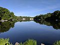 Lake Anne, Reston Virginia (35455695635).jpg