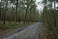 Landschap De Stroopers te Kemzeke - 371732 - onroerenderfgoed.jpg