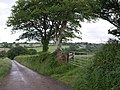 Lane into Wolf valley - geograph.org.uk - 467877.jpg