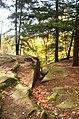 Ledges at Cuyahoga Valley National Park (10544201114).jpg