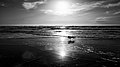 Leica Moments (15630991817).jpg