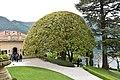 Lenno - Villa del Balbianello 0360.JPG