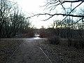 Leonovsky Park At The Early Springtime (221146917).jpeg