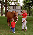 "Lexington, Kentucky - Kentucky Horse Park ""Here, Taste This!"" (3533830334) (2).jpg"