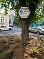 Listed tree. - Mészáros street, Budapest District I.JPG