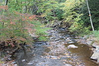 Little Catawissa Creek looking downstream.JPG