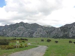 Llanos del Republicano - P1230182.jpg