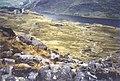 Llyn Ogwen - geograph.org.uk - 1027922.jpg