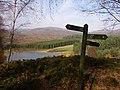 Loch Gynack - geograph.org.uk - 667725.jpg