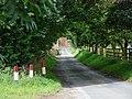 Lockington Road, Lund. - geograph.org.uk - 526948.jpg