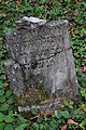 Lomnice-židovský-hřbitov2012c.jpg