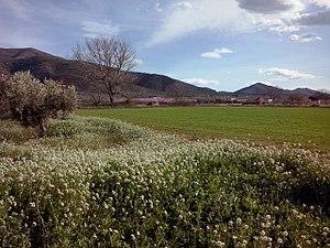 Los campos del valle entre la Sierra de Montsiá y la Sierra de Godall, Ulldecona - Ventalles, Cataluña, España.jpg