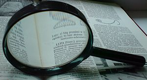 English: Magnifying glass Deutsch: eine Lupe v...