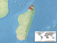 Lygodactylus madagascariensis distribution.png