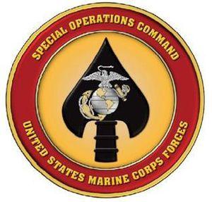 United States Marine Corps Critical Skills Operator - Image: MARSOC LOGO