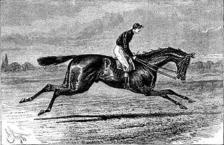 Merry Hampton British-bred Thoroughbred racehorse