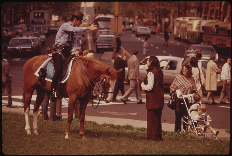 File:MOUNTED POLICEMAN ON BUSY DOWNTOWN THOROUGHFARE - NARA - 552732.jpg