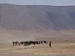 Maasai Ngorongoro.jpg