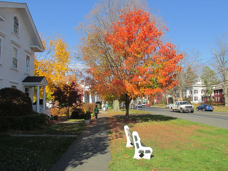 File:Main Street, Newtown CT.jpg