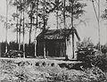 Maison-forestier-filaos.jpg