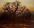 Major Oak, Sherwood Forest, Nottinghamshire Andrew MacCallum.jpg