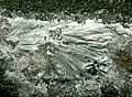 Makatite-164563.jpg