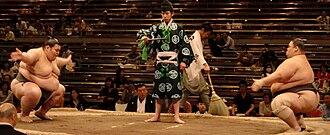 Professional sumo divisions - Makushita bout