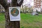 Mandala of Yamantaka on the Tavistock Square Memorial Tree.jpg