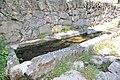 Medinilla 26.jpg