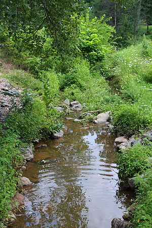 Bucknell University - Miller Run, a stream on Bucknell University's campus