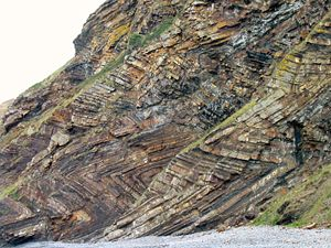 Geology of Cornwall - Chevron folding in the cliffs at Millook Haven, North Cornwall.