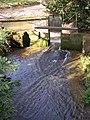 Millpond and sluice, Slip Mill, near Hawkhurst - geograph.org.uk - 348291.jpg