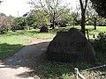 MimomiHongo Park01.JPG