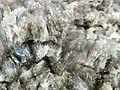 Minerale di gesso.jpeg