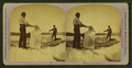 Minnesota ice harvest, from Robert N. Dennis collection of stereoscopic views.png