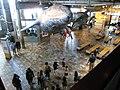 Monterey Bay Aquarium Lobby (3480231790).jpg