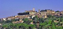 Montescudaio panoramica.jpg