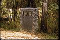 Moores Creek National Battlefield MOCR0950.jpg