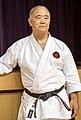 Morio Higaonna 2016.jpg