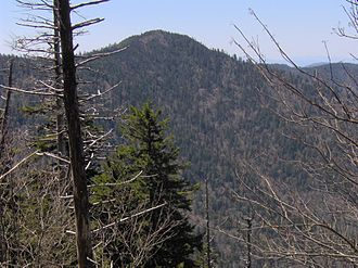 Mount Chapman - Mount Chapman, viewed from Mount Guyot