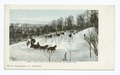 Mt. Royal Road in Winter, Montreal, Que (NYPL b12647398-63137).tiff