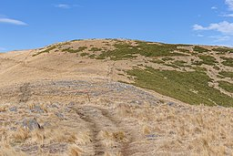 Mt Herbert, Mount Herbert Walkway, New Zealand.jpg
