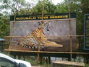 Flora of India - Mudumalai Wildlife Reserve in Tamil Nadu