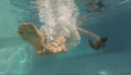 Mujeres flotantes, Mónica Dower, video still 2016.png
