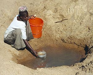 Water scarcity in Africa - Mwamanongu Village water source, Tanzania. In Meatu District, Shinyanga Region, water most often comes from open holes dug in the sand of dry riverbeds, and it is invariably contaminated