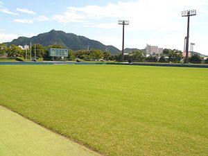 Nagaragawa Ball Field Meadow 4.JPG