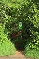 Nature reserve Léiffrächen 20210523-1.jpg