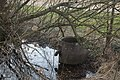 Naturschutzgebiet am Uphof.jpg
