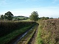 Near Leigh, Bound Lane, late October - geograph.org.uk - 591151.jpg